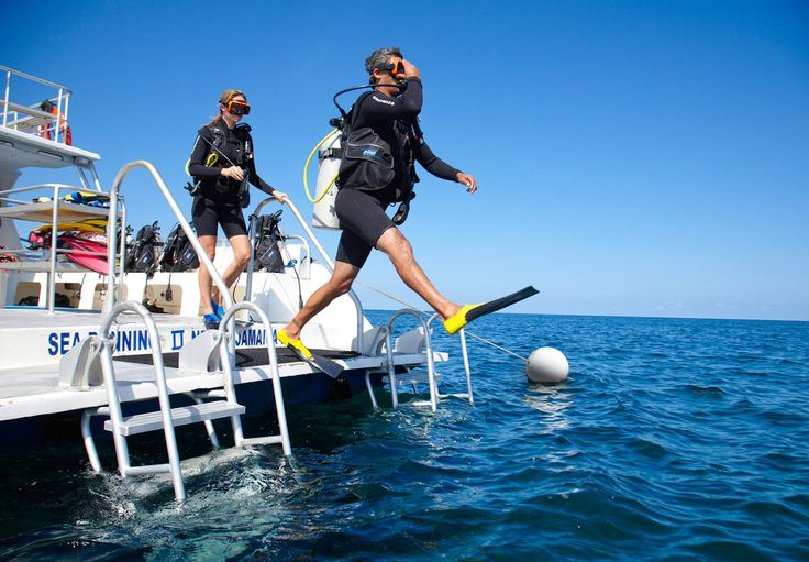 Equipment, staff and unbelievable dive sites: all included! | Sandals Resorts | Jamaica