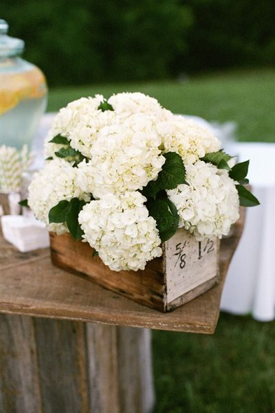 pretty hydrangea centerpiece | Mary Rosenbaum #wedding