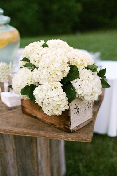 pretty hydrangea centerpiece | Mary Rosenbaum #wedding