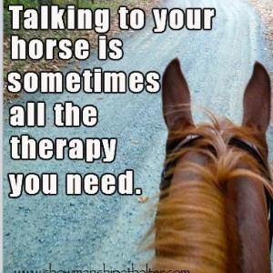 Talking to your horse is sometimes all the therapy you need.