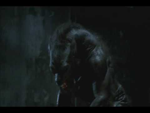 Underworld 1 - Lycan Vs Vampire.  Love this fight scene from Underworld