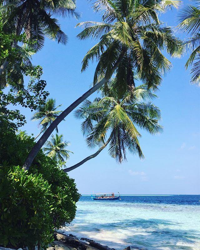 Райский остров ❤️