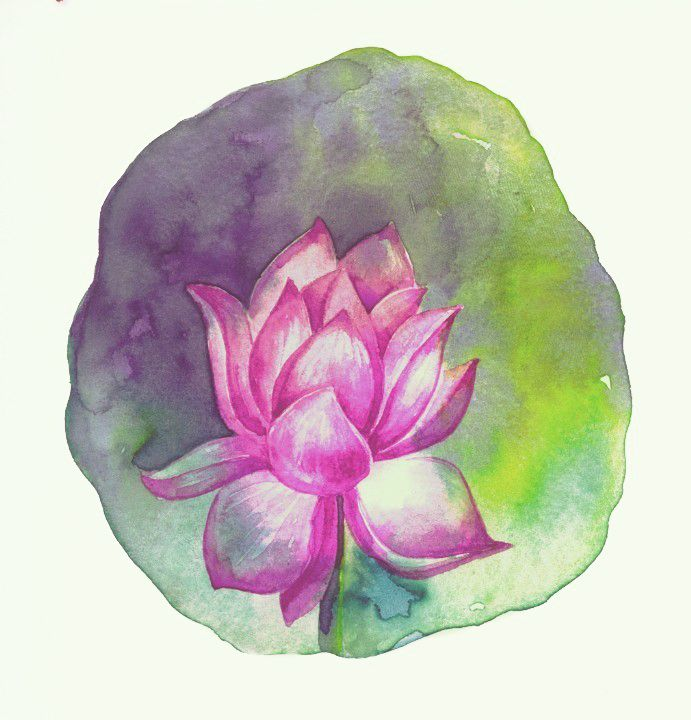 lotus / water colour