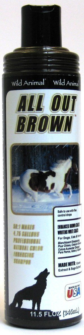 Wild Animal All Out Brown Pet Shampoo 12oz KE800812 >>> Want to know more, click on the image. (This is an affiliate link and I receive a commission for the sales) #DogGrooming
