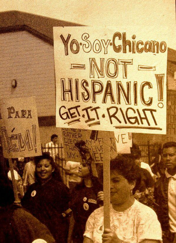 "While I understand the issues some of us have with the term ""Hispanic"" (and even ""Latino"") I personally don't have a problem w/ either anymore (I was against ""Hispanic before) and instead embrace BOTH terms as a unifying banner that encompasses ALL Spanish-speaking mixed race peoples of the Americas… Remember that 'Chicanos' are but a rama off of the Mexican branch of the Raza Tree split into smaller ramas such as: Tejano, Californio, Nuevo Mexicano, etc… But the Tree is ALL Raza together…"