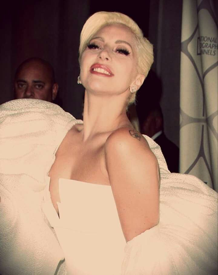 25 Best Ideas About Lady Gaga On Pinterest Lady Gaga