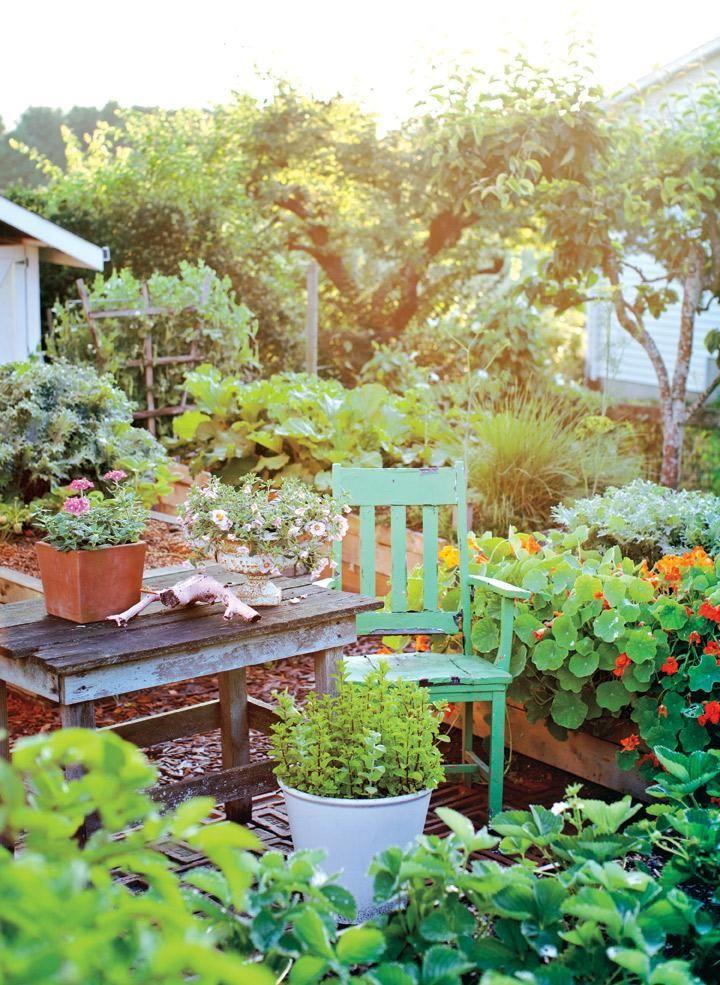 Best 20 Vegetable Garden Design Ideas For Green Living Morflora Vegetable Garden Design Backyard Vegetable Gardens Vegetable Garden Planner