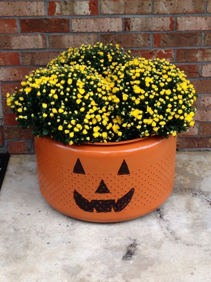 Pumpkin planter made from old washing machine drum