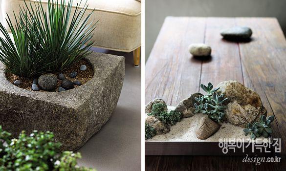 행복이가득한집 Design your lifestyle [플라워 데코] 초보자를 위한 선택 다육 식물