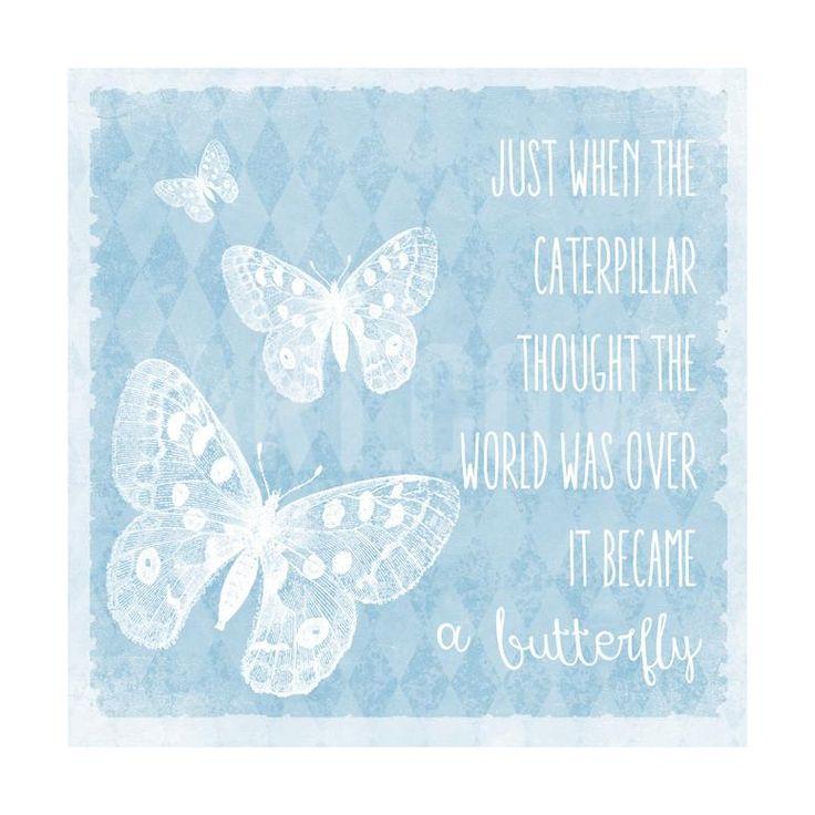 Butterflies Giclee Print by Erin Clark at Art.com
