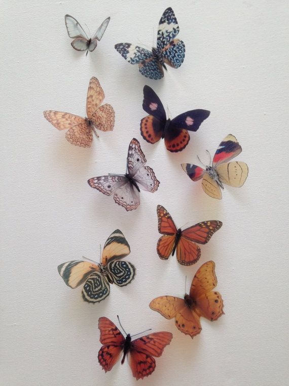 This may be a little much (on top of arrows and bison) but if there is a way to incorporate these without being cheesy, it would also be fun. And they have specific colors so I am not stuck to them. I want lots of reminders in the office of nature, freedom, flight, and adventure. | 3D Butterfly Wall Art Totally Unique 10 Beautiful 3D Natural Flying Removable Butterflies