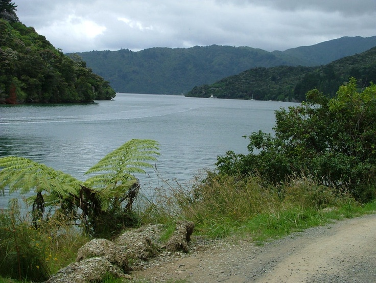 Lost on South Island (Picton), New Zealand