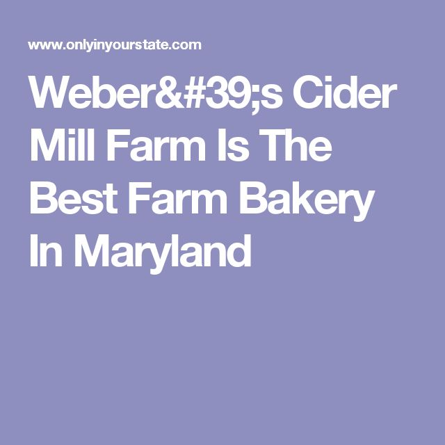Weber's Cider Mill Farm Is The Best Farm Bakery In Maryland