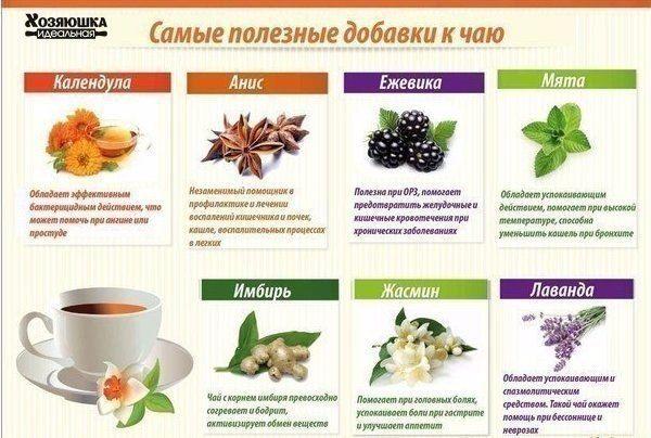 Самые полезные добавки к чаю
