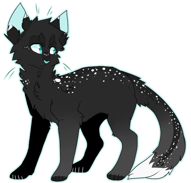 Is Dream A Good Warrior Cat Name