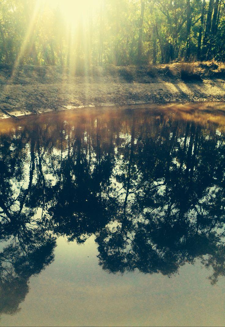 Water hole near Ballerat
