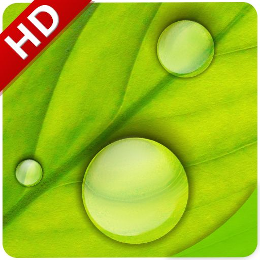 #Popular #App : Rain Sounds  by DreamStudio http://thepopularapps.com/apps/rain-sounds