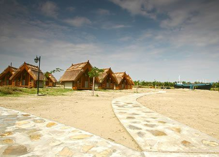 Camping la Green Dolphin din localitatea Sfantul Gheorghe, Delta Dunarii. Oferte de cazare in 55 de casute (bungalouri) si posibilitati de campare a 500 de corturi