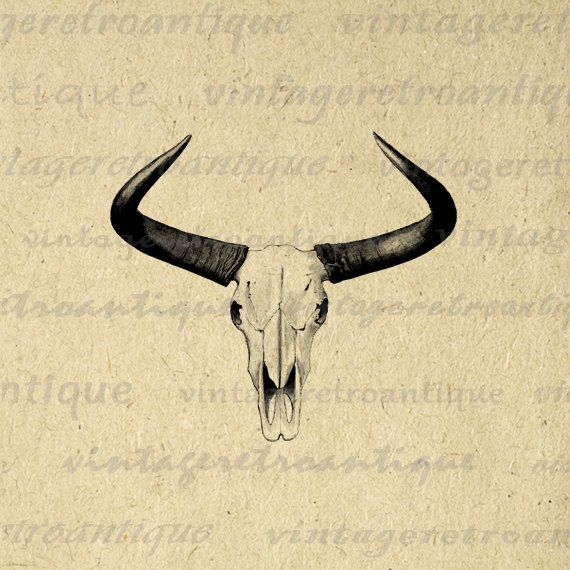 Western Horns Graphic Digital Printable Cow Skull Download Bull Image Antique Clip Art. High quality printable digital graphic clip art from antique artwork. This high resolution digital artwork is great for iron on transfers, making prints, and more. This image is high quality, high resolution at 8½ x 11 inches. A Transparent background png version is included.