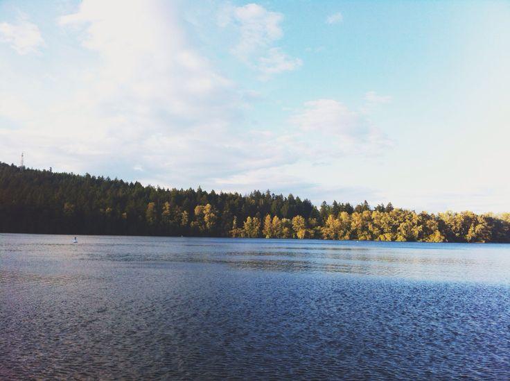 Elk Lake, Victoria BC