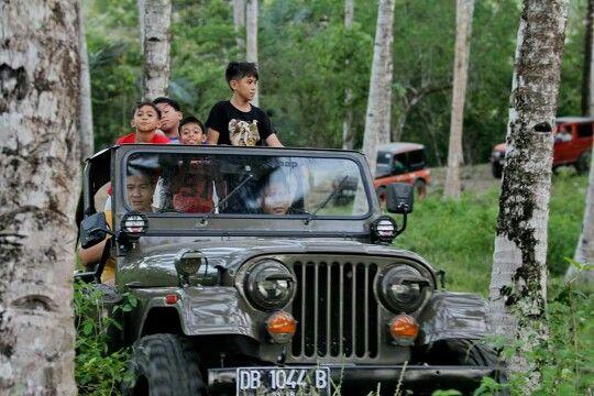 Kelapa n jeep