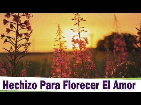 Hechizo Para Atraer El Amor a Tu Vida - Los Hechizos De Candela