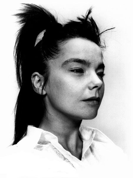 bjork by craig mcdean