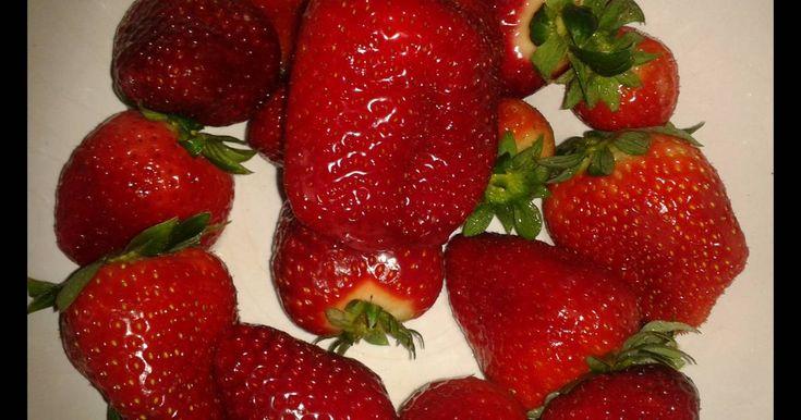 Fabulosa receta para Mermelada de fresa casera fácil. Un desayuno casero disfrutando de una mermelada casera con las fresas que se nos han puesto maduras. Disfrutando de las conservas.
