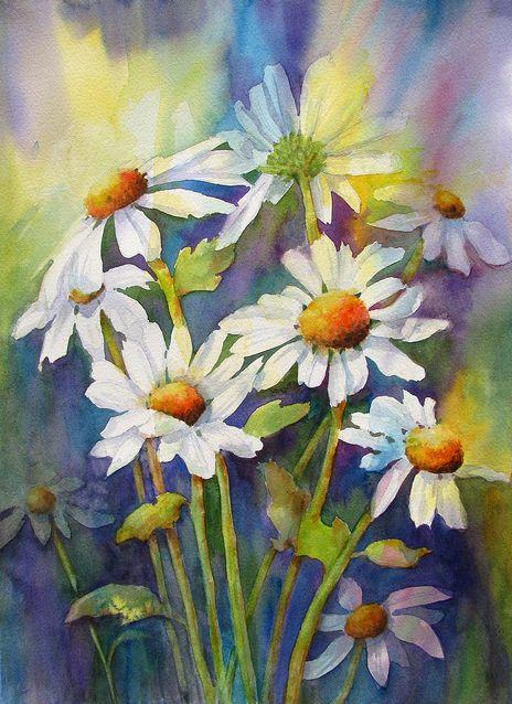 цветы ромашки картинки акварель такое