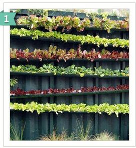 HANGING GARDENS: Gutter gardens are beautiful, inexpensive and easy to make! In these recycled gutters, herbs, strawberries, radishes and flowers flourish. Plus, if you get enough rain, your garden will be self-sufficient. Water drips from the top layer to the layer below.
