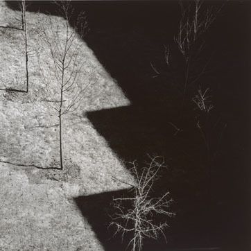 Harry Callahan Ansley Park, Atlanta, 1992. Learn Fine Art Photography…
