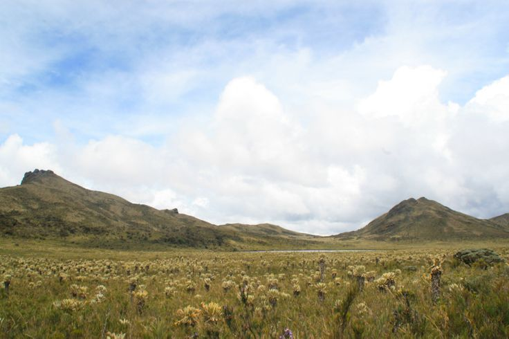 Laguna de la Magdalena