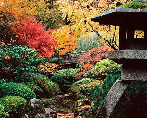 85 best fall in the garden images on pinterest japanese for Formal japanese garden