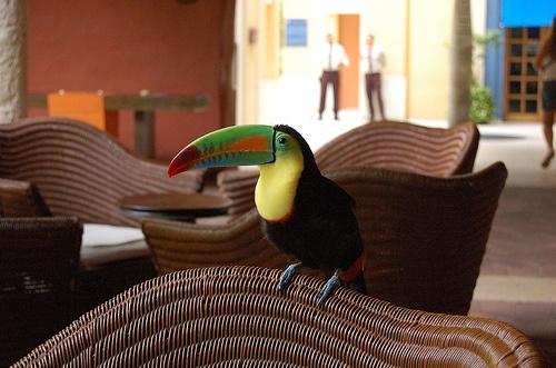 Usuario de Flickr: Pablo Retamal  Hotel Santa Clara