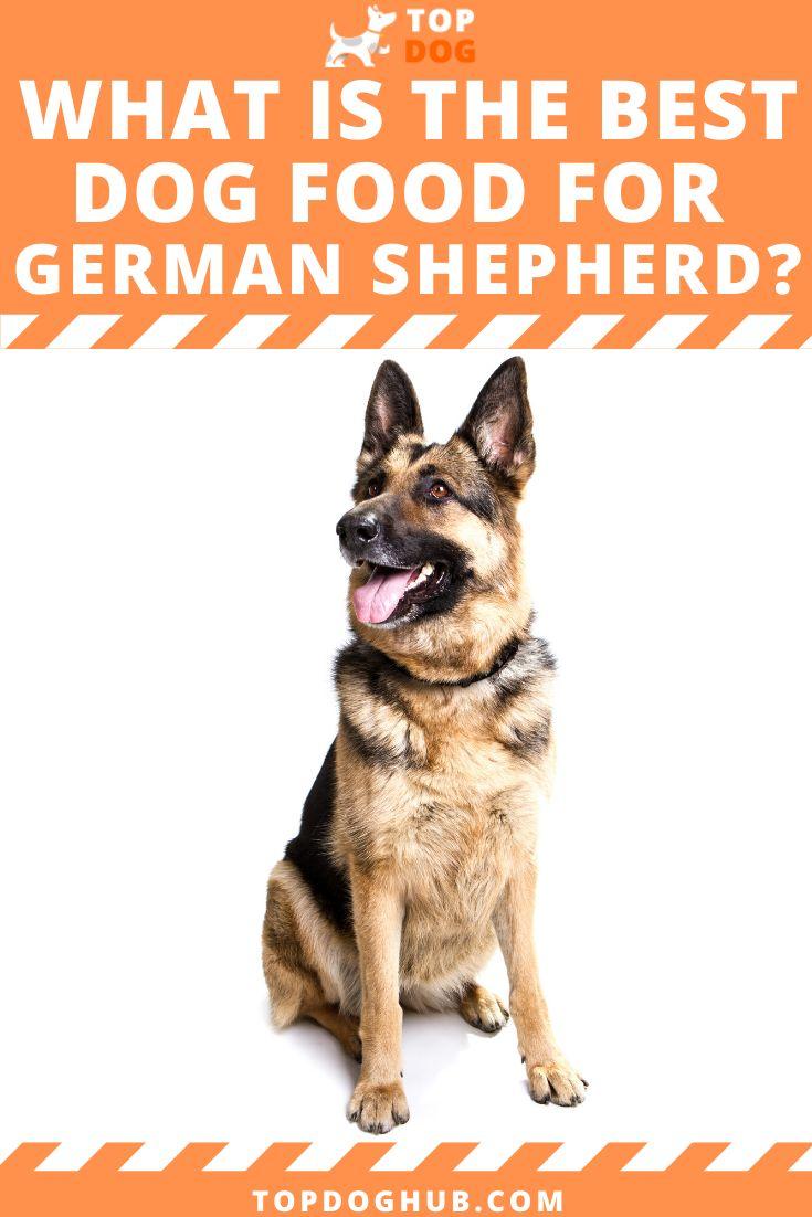 Best dog foods for german shepherd in 2020 best dog food