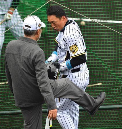 安仁屋宗八氏に蹴られる金本知憲=宜野座村営野球場