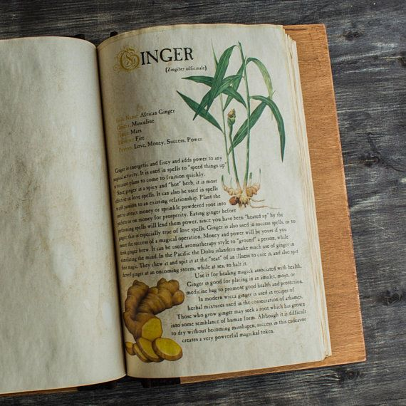 Spices 20 Pcs Herbology Digital Pages For Book Of Shadows Herbs