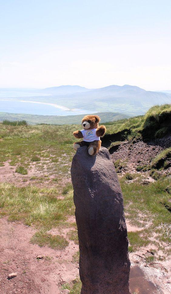Der Urlaubär auf dem Mount Brandon auf der Dingle-Halbinsel in Irland ... #urlaubär #ireland