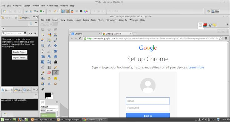 Web Design For Beginners - 3. How To Install Aptana Studio, GIMP And Google Chrome On Linux Mint
