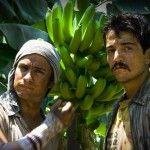 De acuerdo con la edición mexicana de Forbes, estas son las 15 películas mexicanas más taquilleras de la historia.