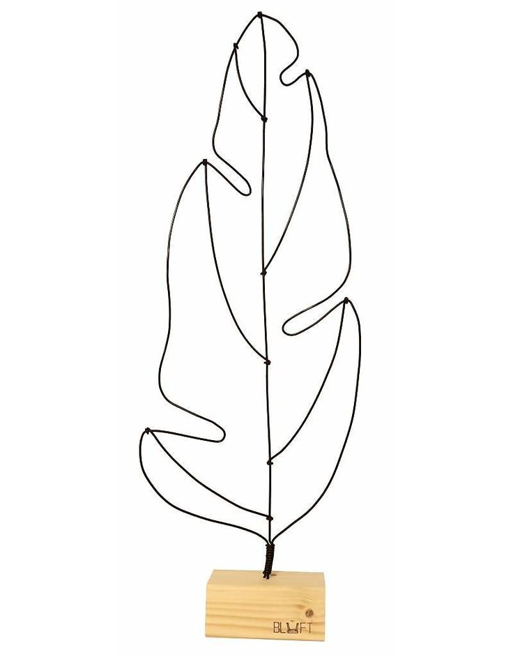 Bluft Musa bananen blad