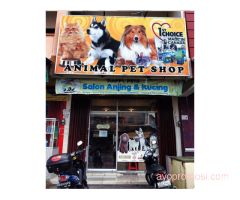 Animal Petshop & Grooming Center #ayopromosi