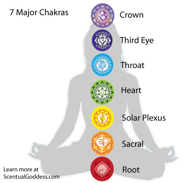 The 7 Major Chakras:  Root, Sacral, Solar Plexus, Heart, Throat, Third Eye & Crown.  Each of your chakras houses a different aspect of your life.  From being able to feel grounded, safe and secure to your confidence, self esteem, ability to give and receive love, speak your personal truth and connect with Spirit and the Universe. Opening, clearing and balancing your chakras is part of your spiritual journey to enlightenment.     #chakras #7chakras #chakra #enlightenment #spiritual #energy…