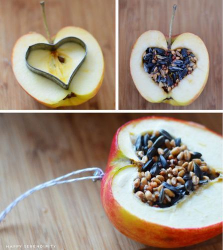 For the birds ~ Cut a big apple in half and carve out a heart with a cookie cutter. The tutorial in German & English http://happyserendipity.com/diy-ein-huebsches-vogelrestaurant/