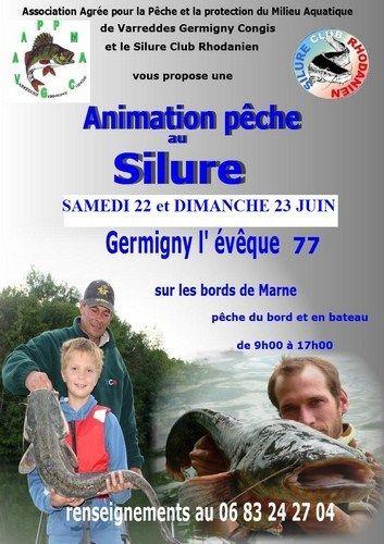 Animation de pêche au silure 2013 à Germigny l'Evêque. Du 22 au 23 juin 2013 à Germigny l'Evêque.