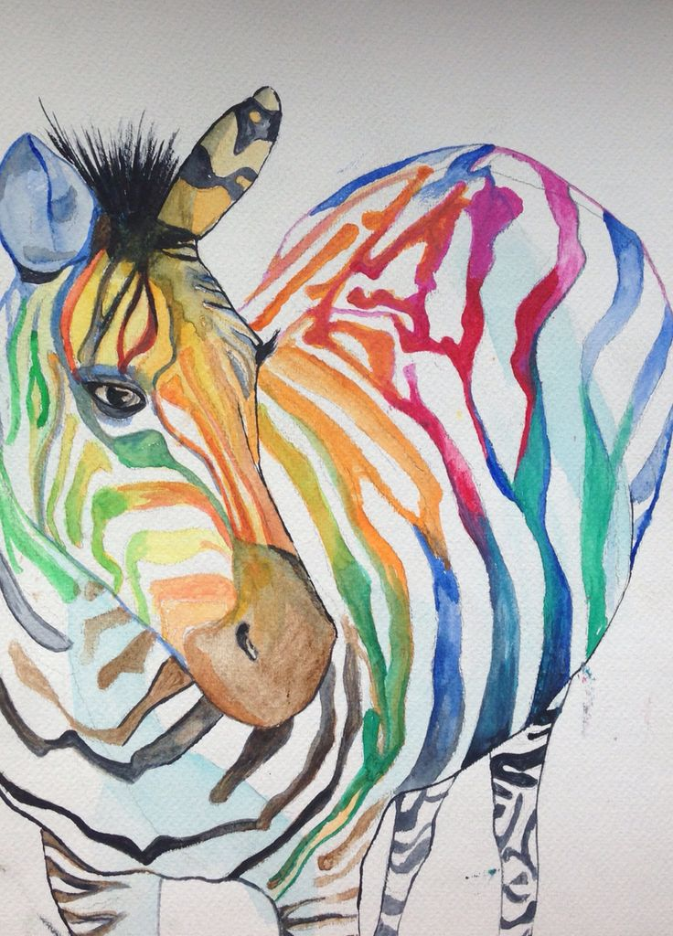 zebra full of colors