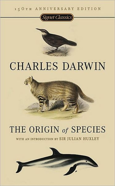 What does Darwin mean for us?