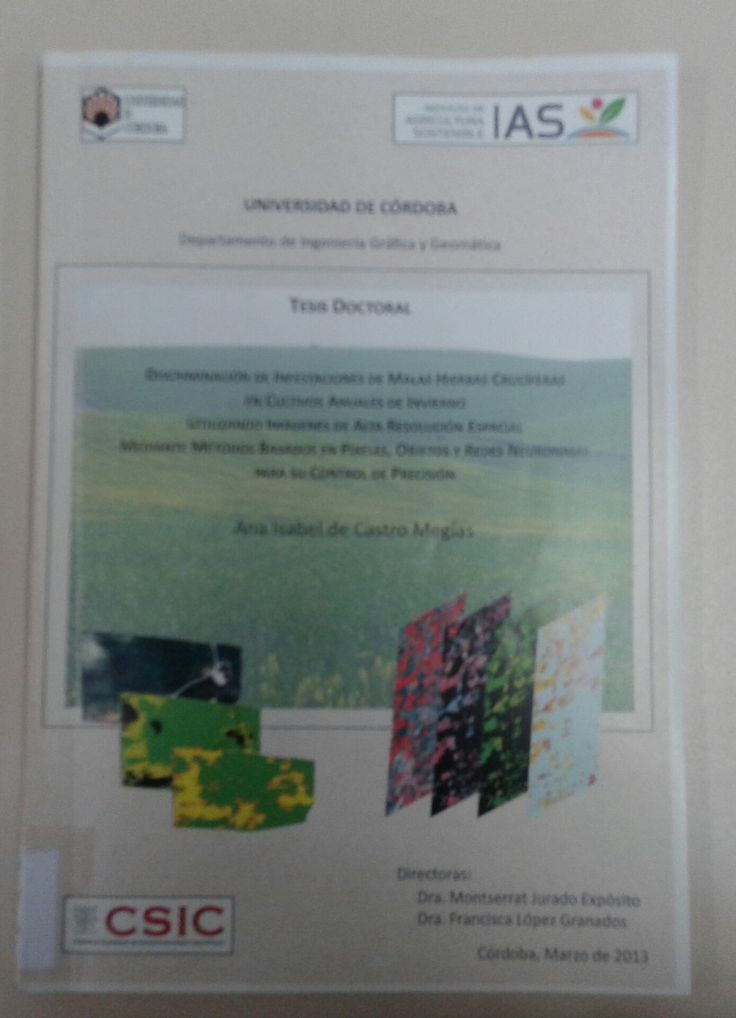 Discriminación de infestaciones de malas hierbas crucíferas en cultivos anuales de invierno utilizando imágenes de alta resolución espacial mediante métodos basados en píxeles, objetos y redes neuronales para su control de precisión / Ana Isabel de Castro Megías .Córdoba : Universidad de Córdoba, 2013