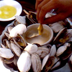 RI steamed clams - Google Search  longer necks , often called soft shelled clams by some.