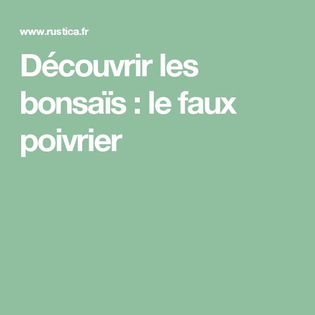 Découvrir les bonsaïs : le faux poivrier